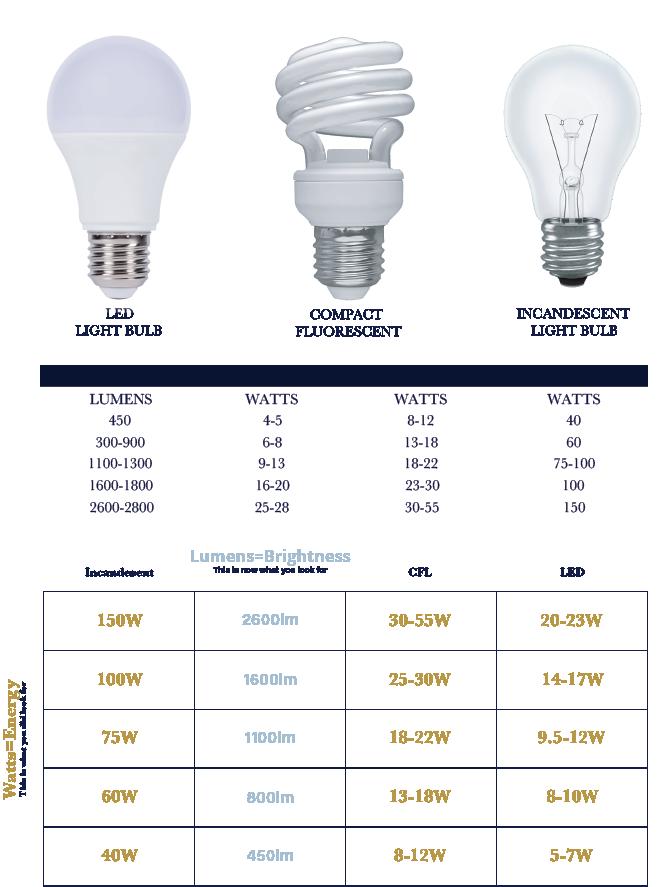bulbs2019